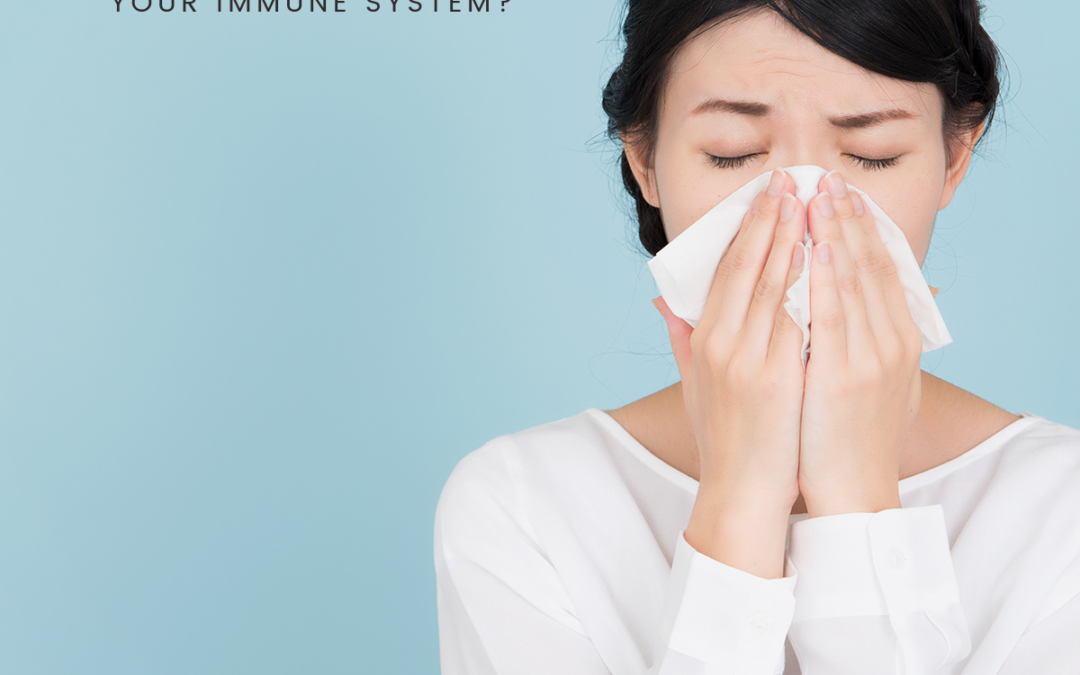SEVEN STEPS TO SUPPORT YOUR IMMUNE SYSTEM
